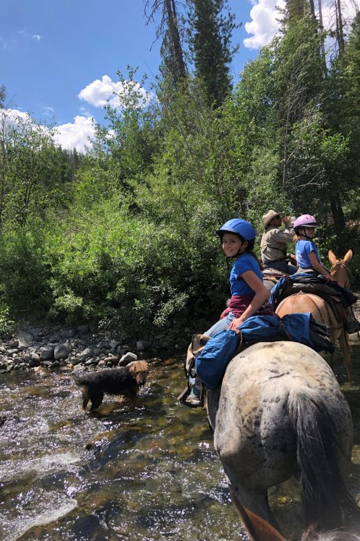 Guided horse pack trips in Yellowstone country and Shoshone Forest with 307 outfitters