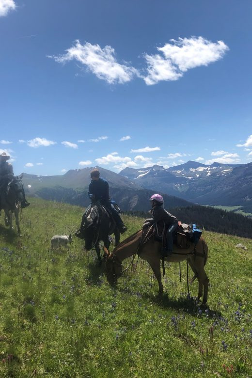 Scenic guided pack trip with Scott LaFevers and 307 outfitters in Wyoming and Yellowstone Country
