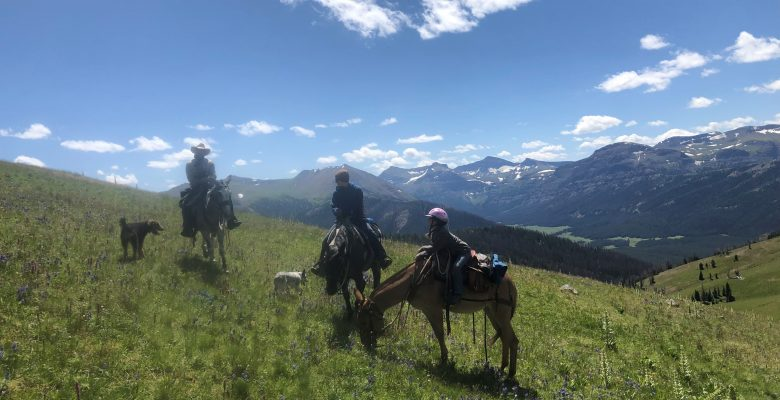 Family on a Wyoming Summer pack trip with 307 Outfitters of Cody, WY