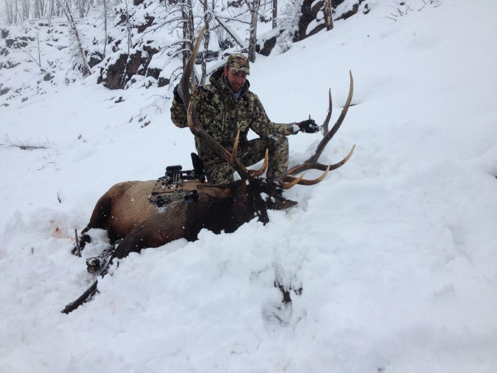 307 outfitters guided bow hunting trips in Shoshone National Forest