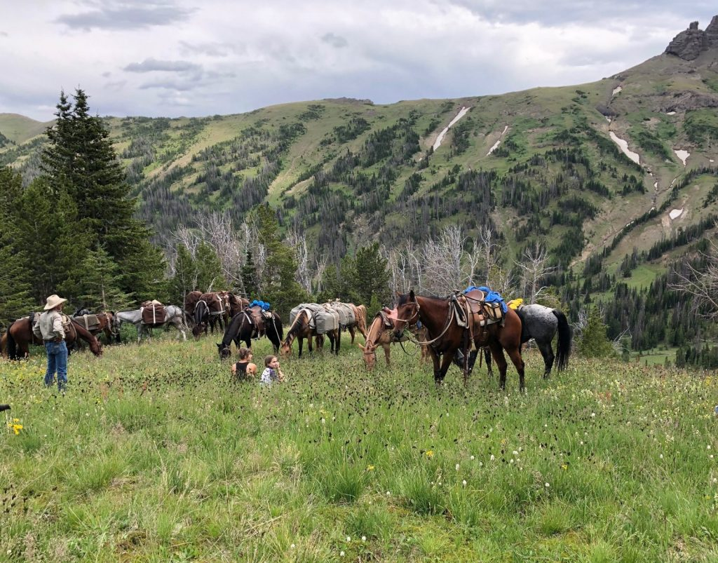 Break Time - 307 Outfitters Permitted outfitter on on the North Fork of the Shoshone National Forest near Cody Wyoming