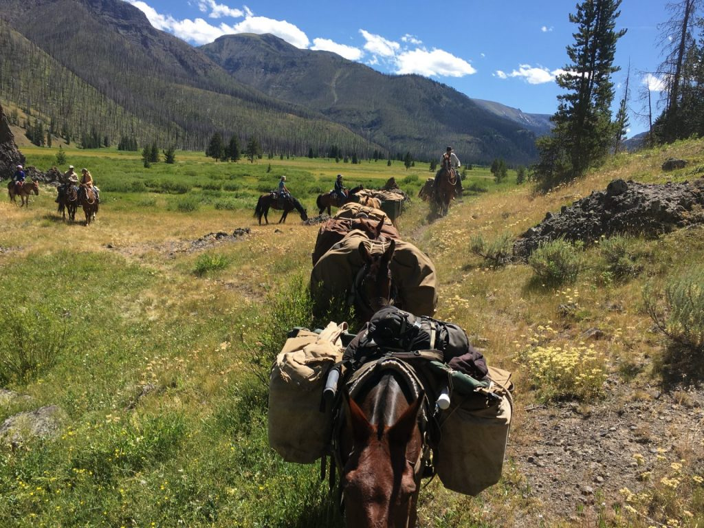 Pack string Bliss Creek Meadows South Fork of the Shoshone