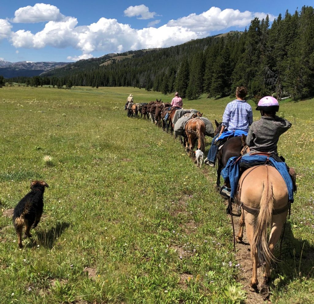 Summer pack trips in Wyoming with 307 Outfitters