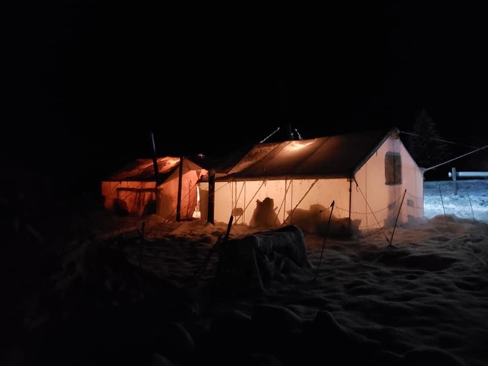 Wyoming Hunting Camp at Night with 307 Outfitters on Shoshone National Forest