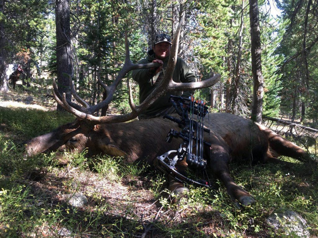 307 Outfitters unit 55 archery elk hunts2