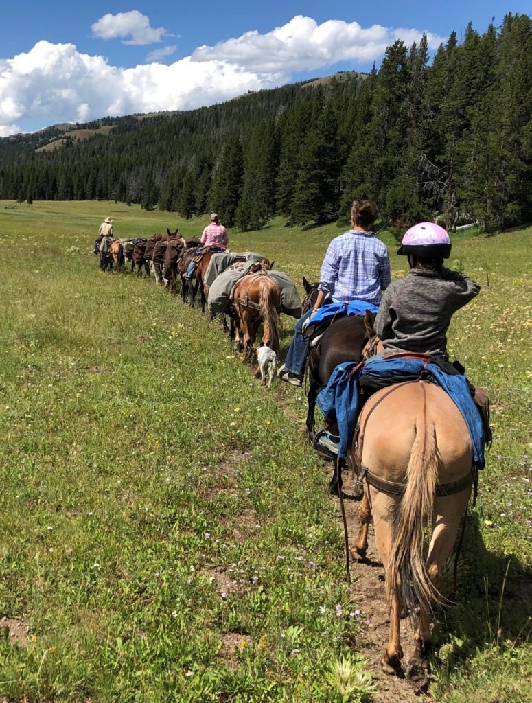 Cody Wyoming summer pack trips with 307 Outfitters