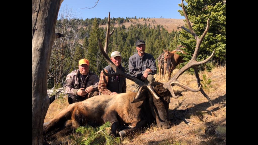 Unit 55 trophy bull elk in Wilderness horse back hunt