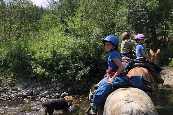 Guided horse pack trips in Yellowstone with 307 outfitters